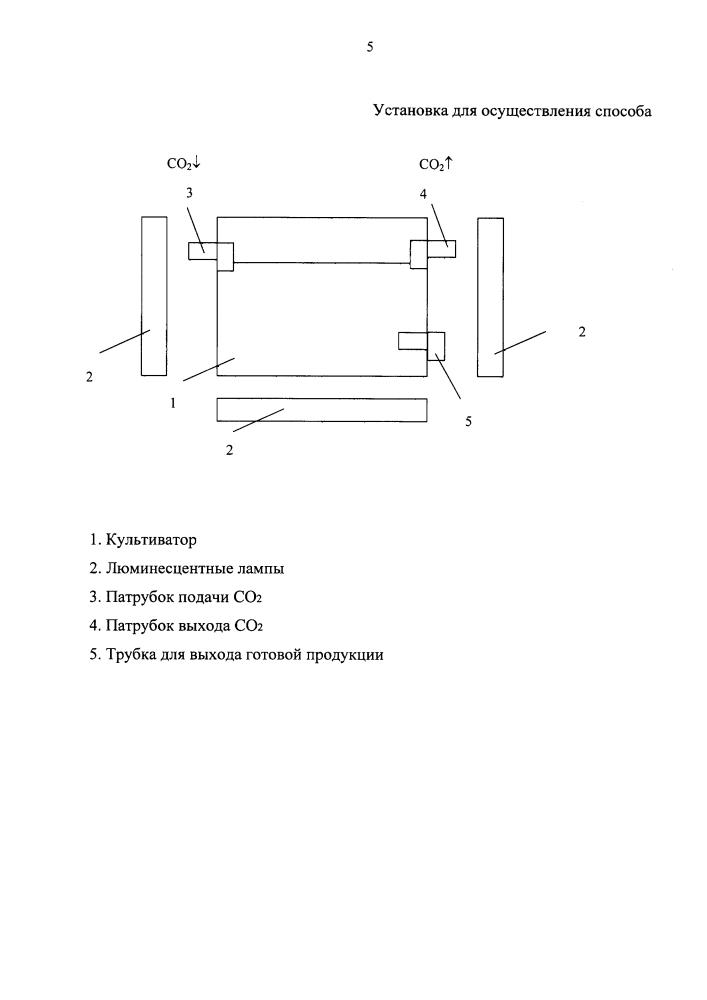Способ культивирования микроводоросли chlorella