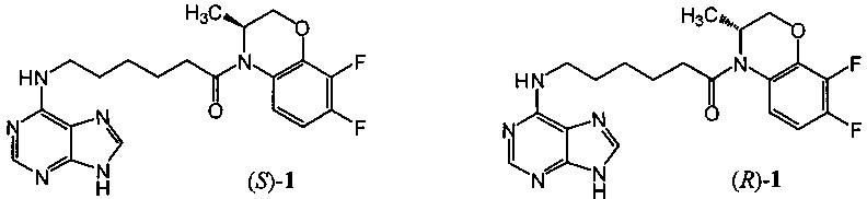 (3s)-4-[6-(пурин-6-иламино)гексаноил]-3,4-дигидро-3-метил-7,8-дифтор-2н-[1,4]бензоксазин и (3r)-4-[6-(пурин-6-иламино)гексаноил]-3,4-дигидро-3-метил-7,8-дифтор-2н-[1,4]бензоксазин, обладающие противовирусной активностью