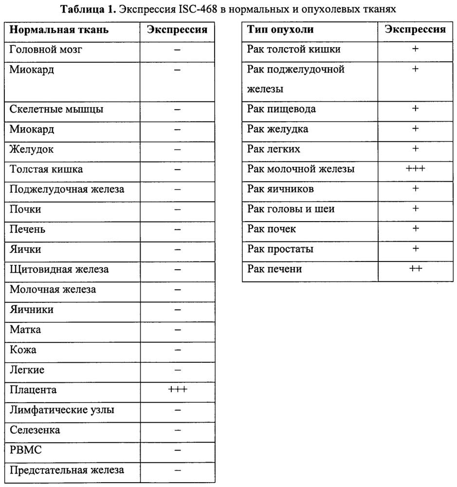 Идентификация опухолеассоциированных антигенов для диагностики и терапии