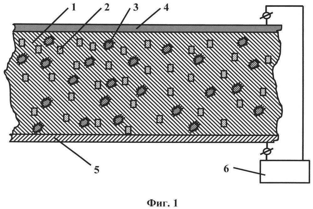Источник излучения, случайный лазер и экран