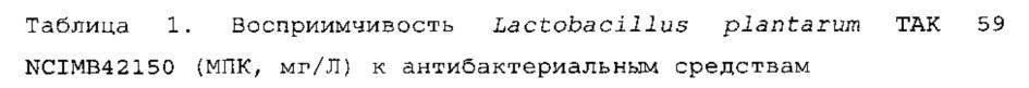 Изолированный штамм микроорганизма lactobacillus plantarum tak 59 ncimb42150 и его применение