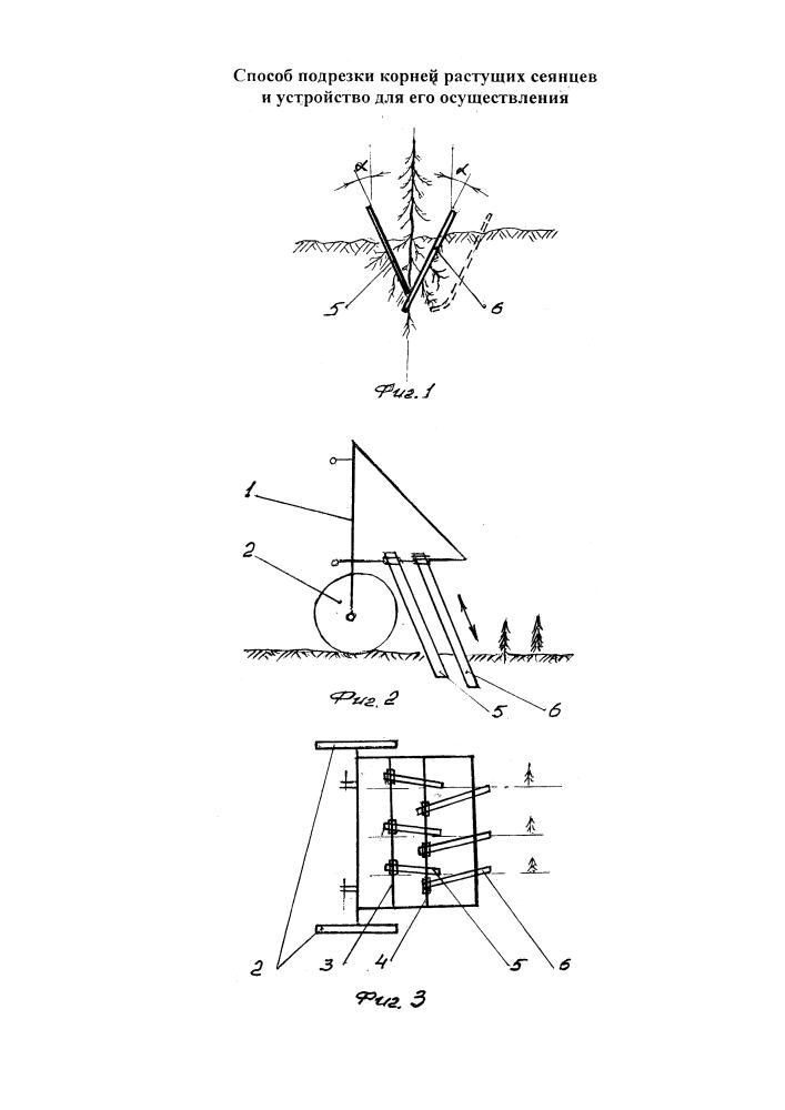 Способ подрезки корней растущих сеянцев и устройство для его осуществления