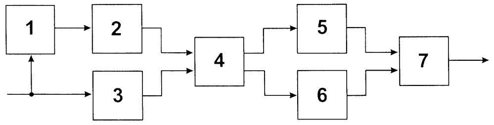 Способ измерения морфологической мультифрактальной сигнатуры