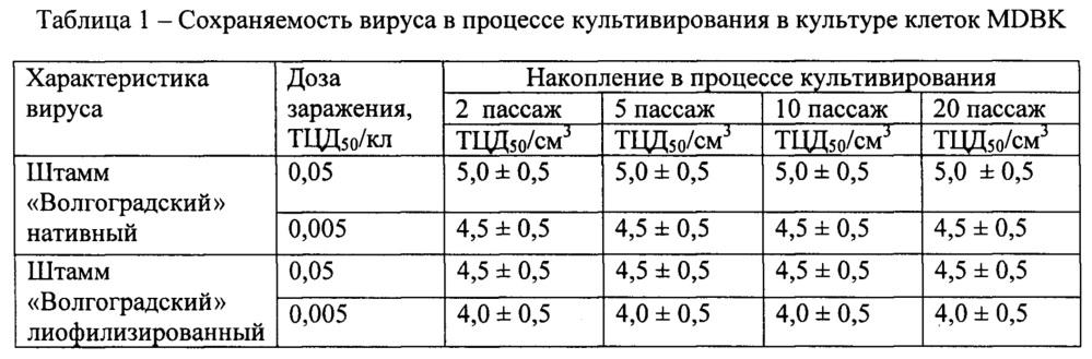 Штамм волгоградский вируса нодулярного дерматита крупного рогатого скота для вирусологических, молекулярно-генетических, мониторинговых исследований, изготовления вакцин и диагностических препаратов