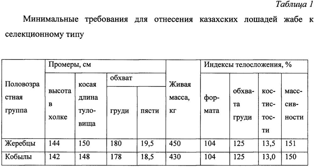 Способ отбора казахских лошадей жабе для селекционного процесса