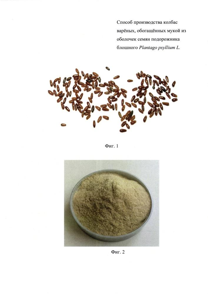 Способ производства колбас варёных, обогащённых мукой из оболочек семян подорожника блошного plantago psyllium l.