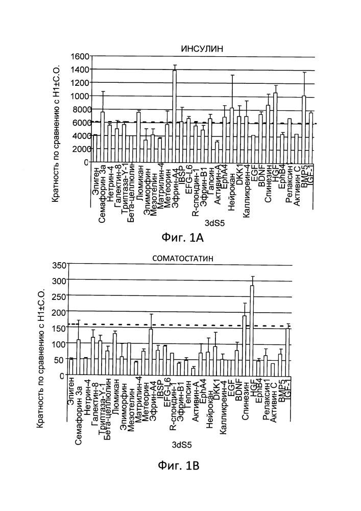 Использование лигандов эпинефрина для дифференцирования клеток панкреатической эндодермы