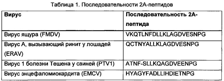 Векторы для экспрессии простатоассоциированных антигенов