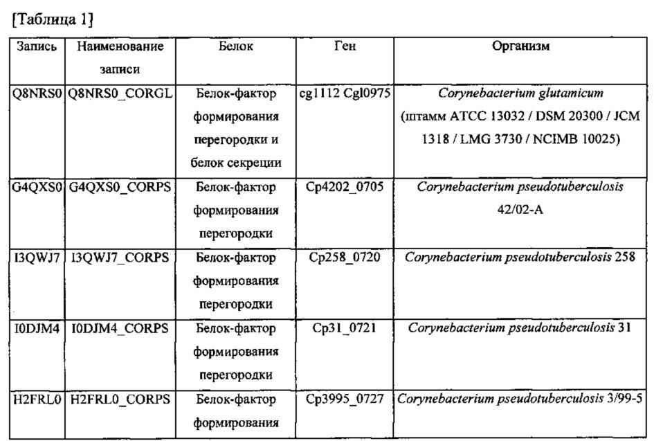 Микроорганизм corynebacterium с улучшенной способностью продуцировать l-лизин и способ получения l-лизина с его помощью