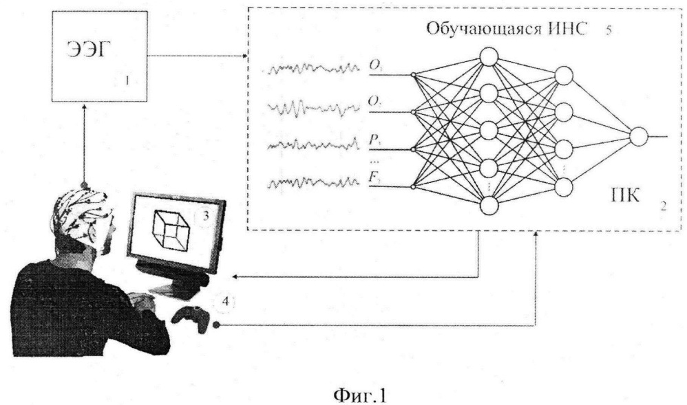 Способ идентификации человека по ээг-отклику на неоднозначные изображения