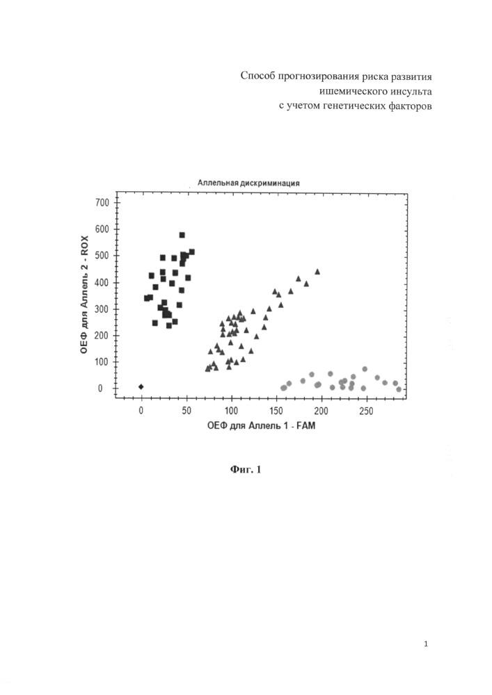 Способ прогнозирования риска развития ишемического инсульта с учетом генетических факторов