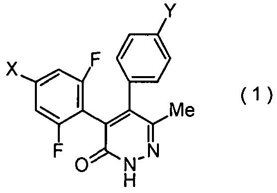 Способ получения соединения пиридазинона и промежуточных продуктов для его получения