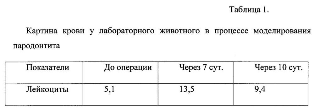 Способ моделирования экспериментального пародонтита