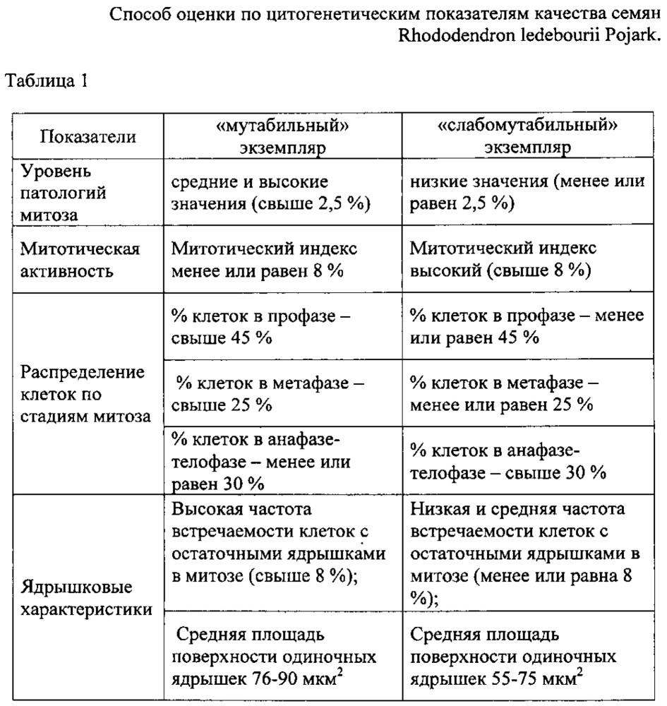 Способ оценки по цитогенетическим показателям качества семян rhododendron ledebourii pojark