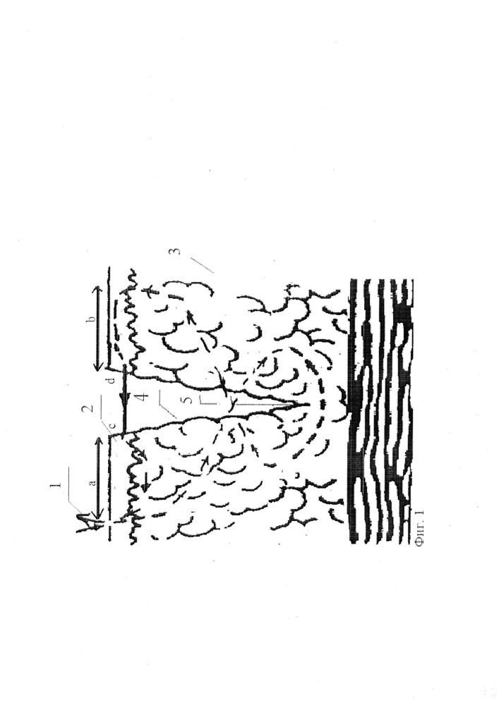 Способ выполнения отдельных кожных узловых швов