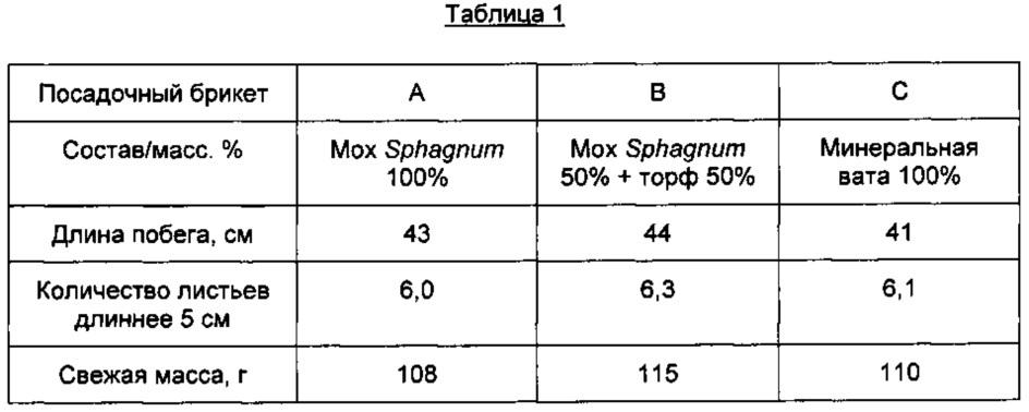 Конструкции субстратов для выращивания растений на основе мха sphagnum и способ их получения