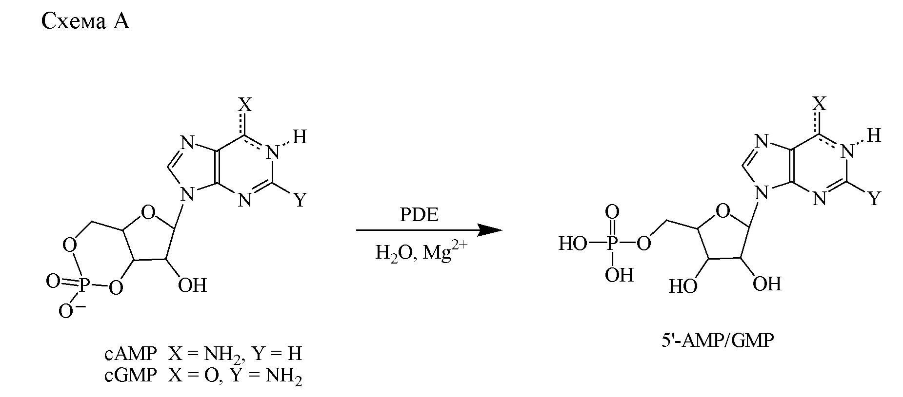 Комбинации, содержащие ингибиторы pde 2, такие как 1-арил-4-метил-[1,2,4]триазоло[4,3-а]хиноксалиновые соединения, и ингибиторы pde 10, для применения в лечении неврологических или метаболических расстройств