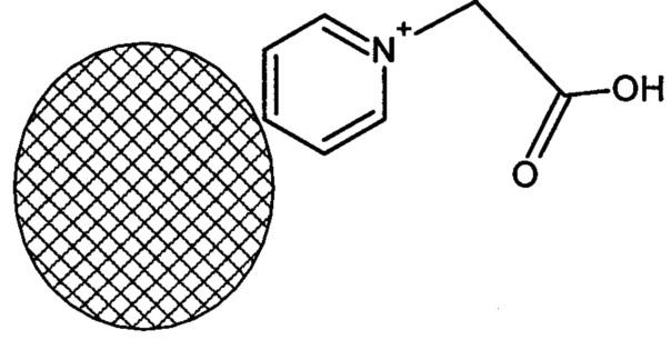 Тест-система на основе конъюгатов полимерная микросфера-тиреоглобулин для экспресс-диагностики аутоиммунных заболеваний щитовидной железы