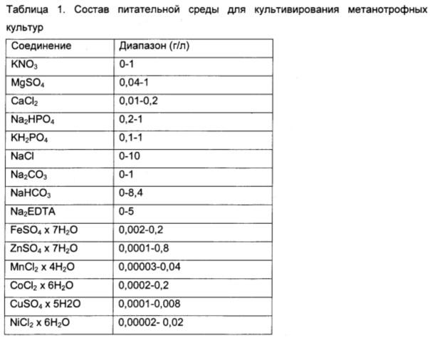 Микробиологическая конверсия метана