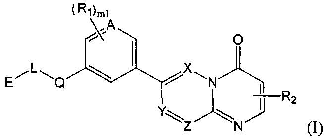 Аналог пиридино[1,2-а]пиримидона, используемый в качестве ингибитора mtor/pi3k