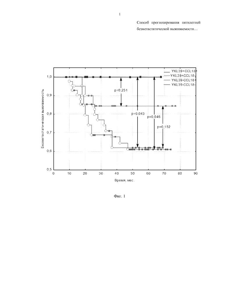 Способ прогнозирования пятилетней безметастатической выживаемости у больных раком молочной железы на основе экспрессии генов белков ykl-39 и ccl18