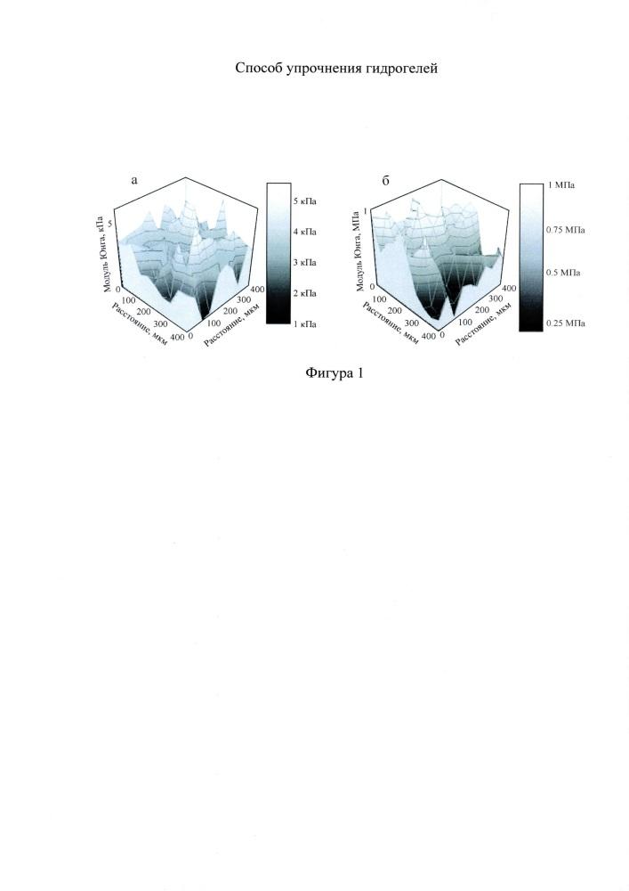 Способ упрочнения гидрогелей