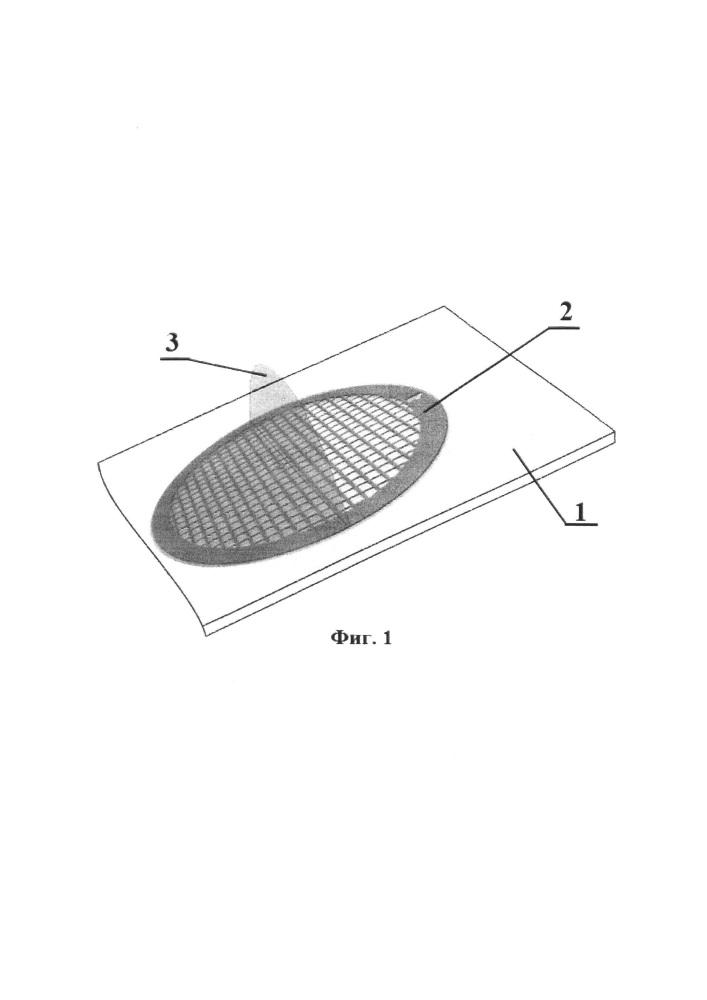 Способ получения образцов биоплёнок холерных вибрионов для исследования методом трансмиссионной электронной микроскопии