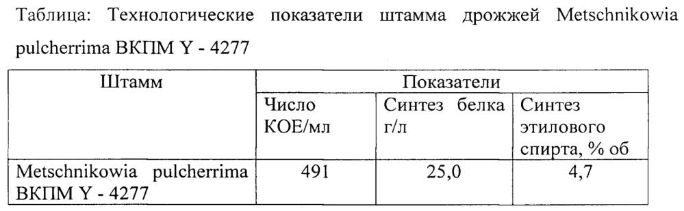 Штамм metchnikowia pulcherrima вкпм y-4277 - продуцент этилового спирта