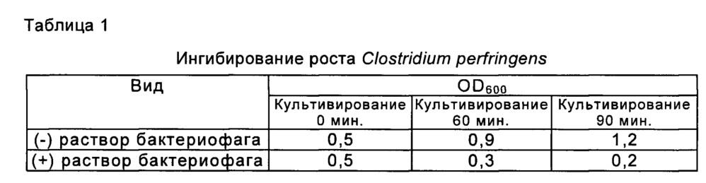 Новый бактериофаг clostridium perfringens clo-pep-1 и его применение для ингибирования пролиферации clostridium perfringens
