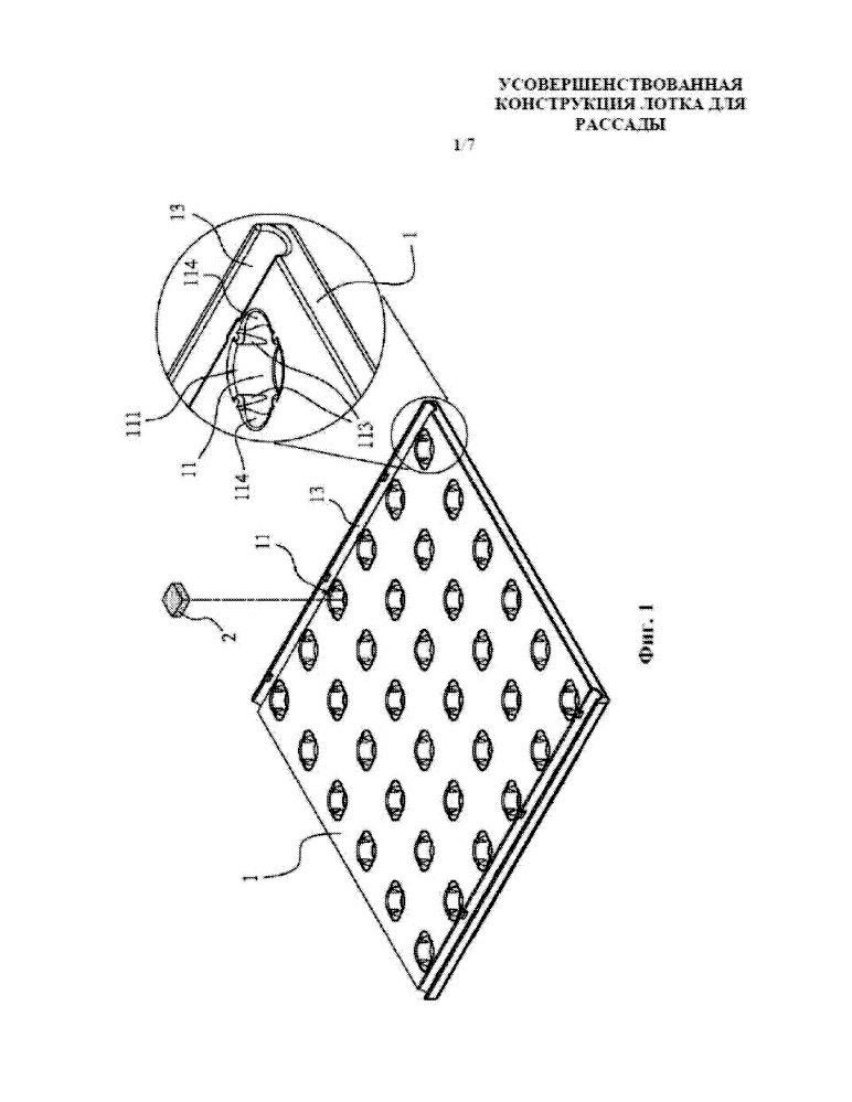 Усовершенствованная конструкция лотка для рассады