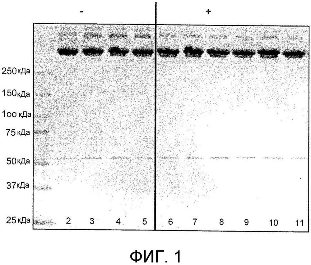 Способ очистки фибриногена, продукт фибриногена и средство для очистки или производства продукта фибриногена