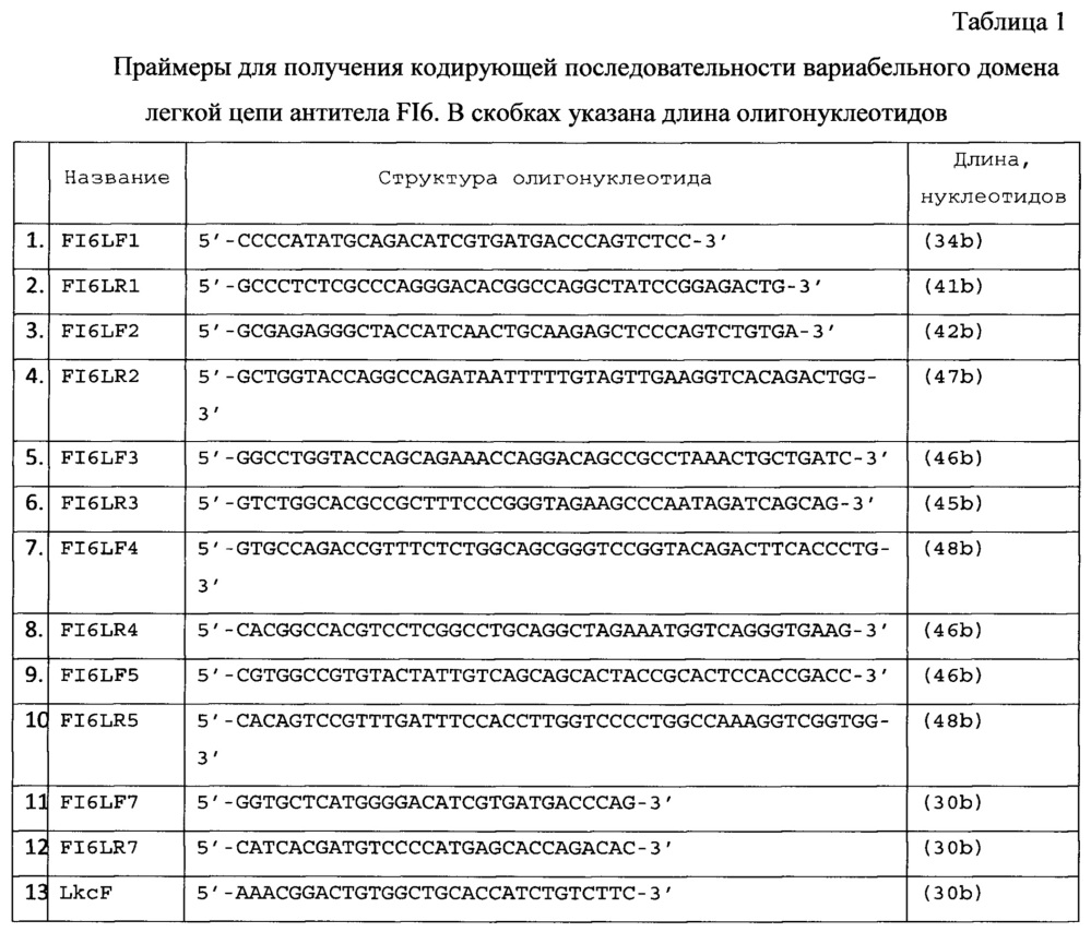 Рекомбинантная плазмидная днк pbipr-abiga1fi6-intht для получения рекомбинантного иммуноглобулина а изотипа iga1