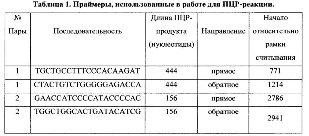 Способ оценки фармакологических и токсических свойств веществ - потенциальных лигандов ahr человека