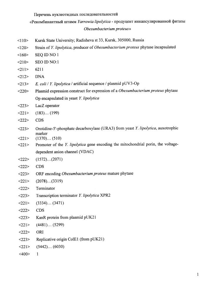 Рекомбинантный штамм yarrowia lipolytica - продуцент инкапсулированной фитазы obesumbacterium proteus