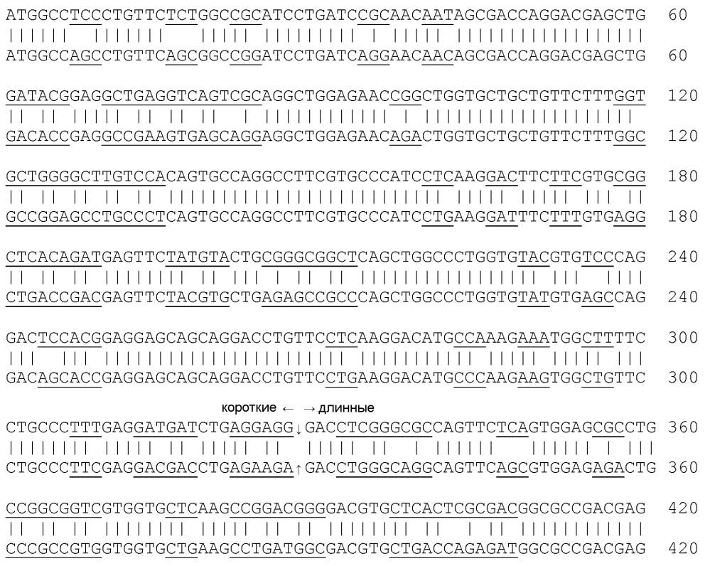 Векторы, кодирующие фактор жизнеспособности колбочек, полученный из палочек
