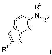 2-фенилимидазо[1,2-а]пиримидины в качестве визуализирующих средств