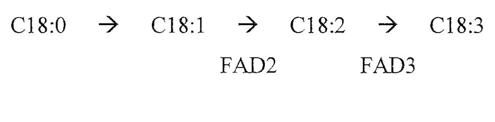 Локусы fad3 для выполнения операций и соответствующие связывающиеся со специфическими сайтами-мишенями белки, способные к вызову направленных разрывов