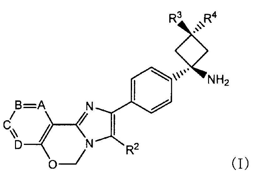 Способ предсказания терапевтической эффективности ингибитора pi3k/akt/mtor на основании экспрессии phlda1 или pik3c2b