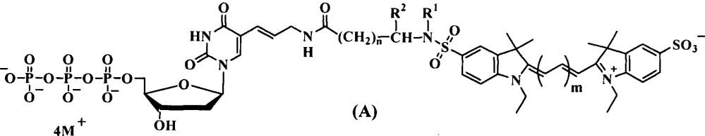 Дезоксиуридинтрифосфаты, связанные с цианиновыми красителями сульфамидоалкильными линкерами, для использования в пцр