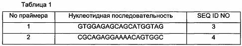 Микроорганизм с улучшенной способностью продуцировать l-лизин и способ получения l-лизина с использованием этого микроорганизма