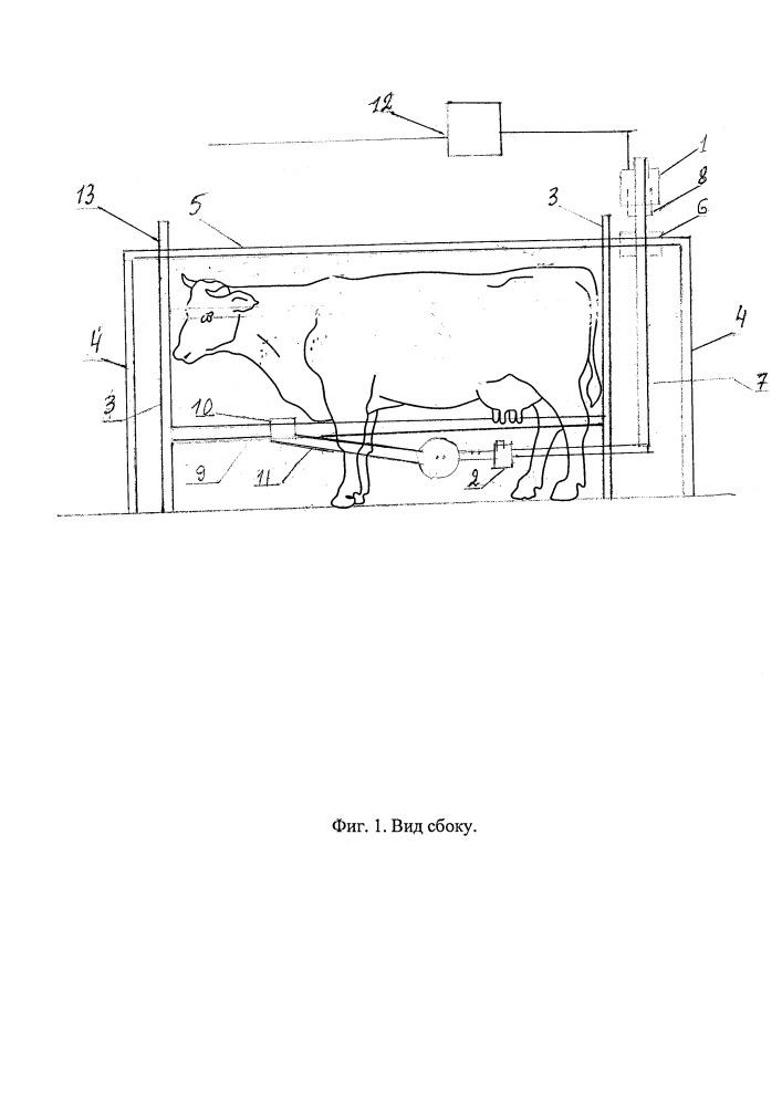 Механизированная установка для бесконтактной тепловизионной видеоцифровой диагностики заболеваний животных