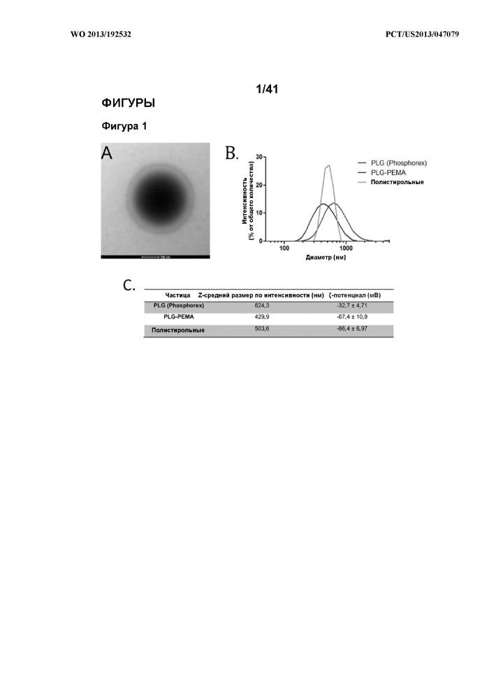 Частицы, конъюгированные с пептидами