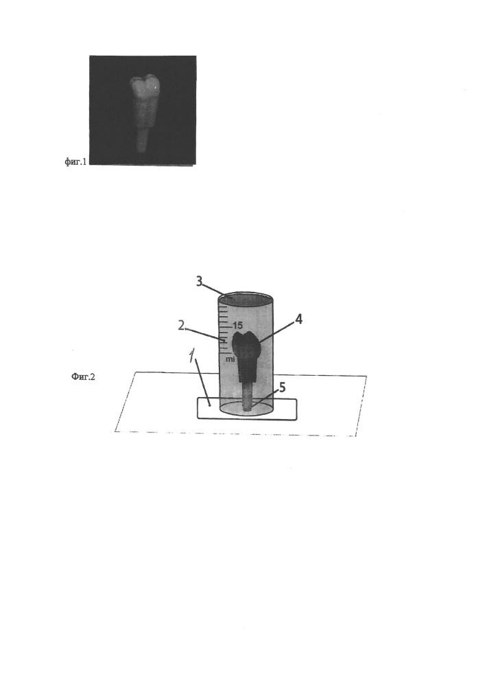Способ изготовления фантомного зуба для стоматологического симулятора