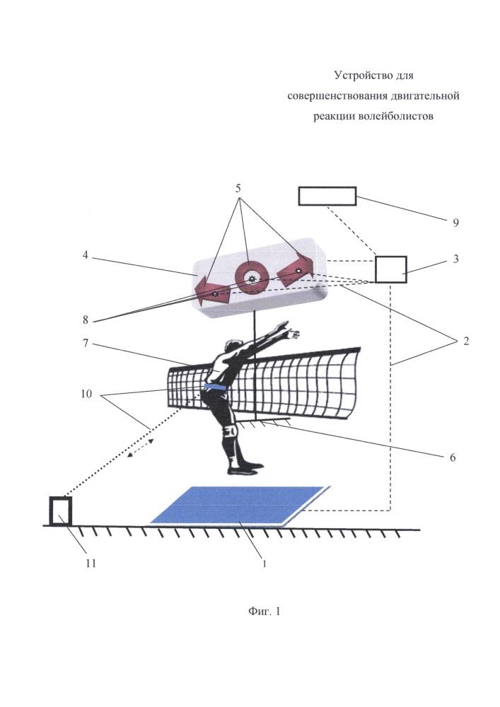 Устройство для совершенствования двигательной реакции волейболистов