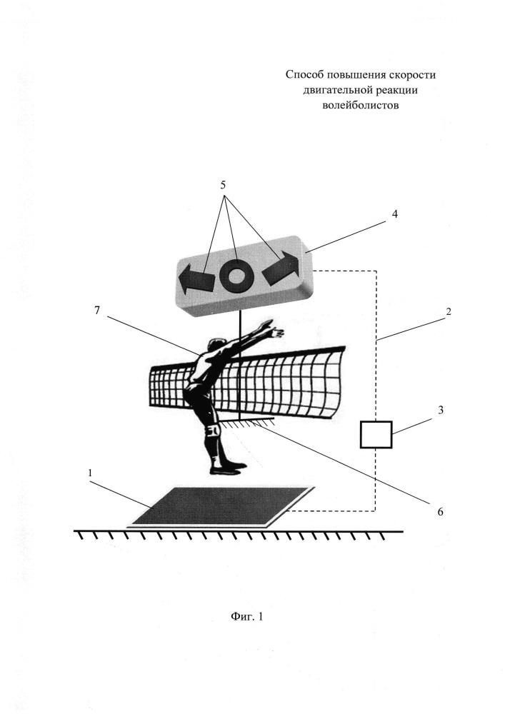 Способ повышения скорости двигательной реакции волейболистов