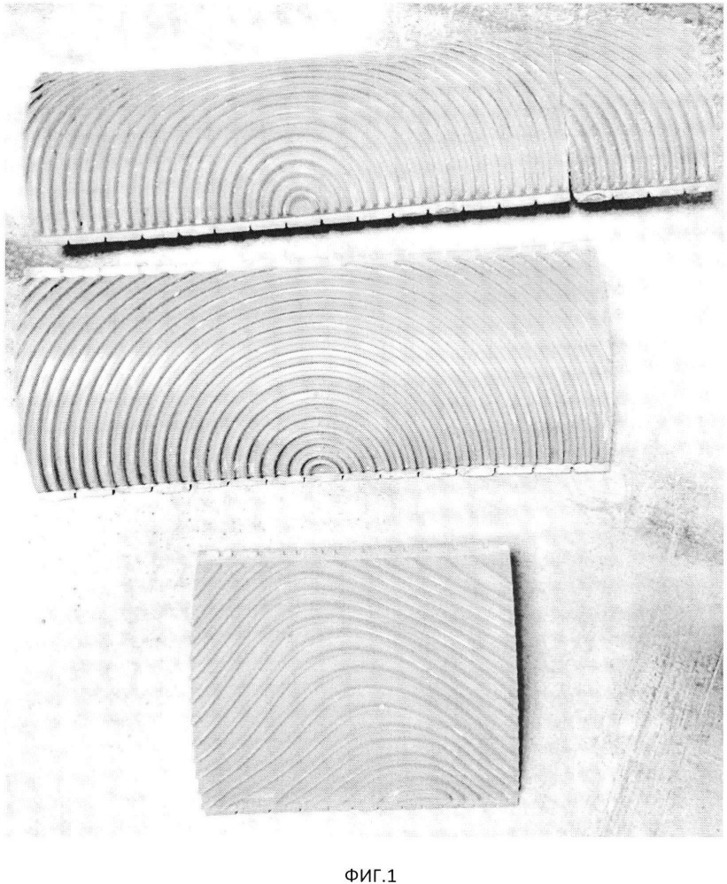 Способ получения художественного декоративного покрытия на поверхности плоских пробковых панелей