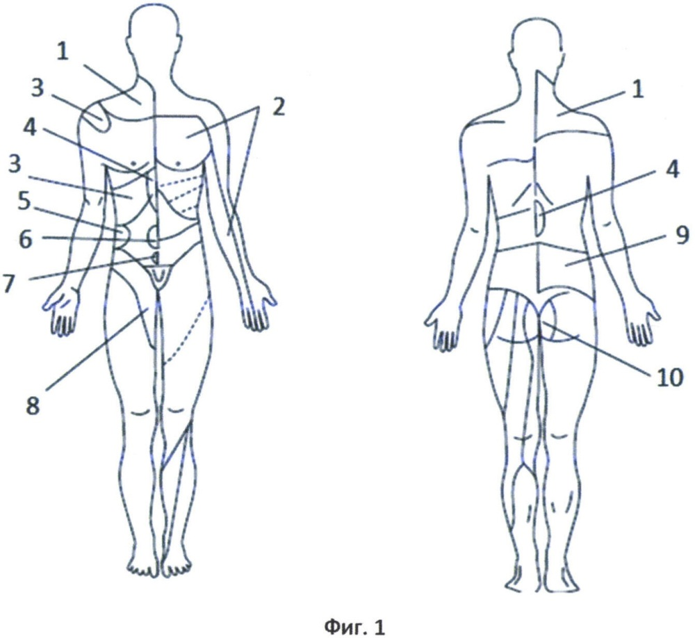 Устройство для светолечения заболеваний внутренних органов