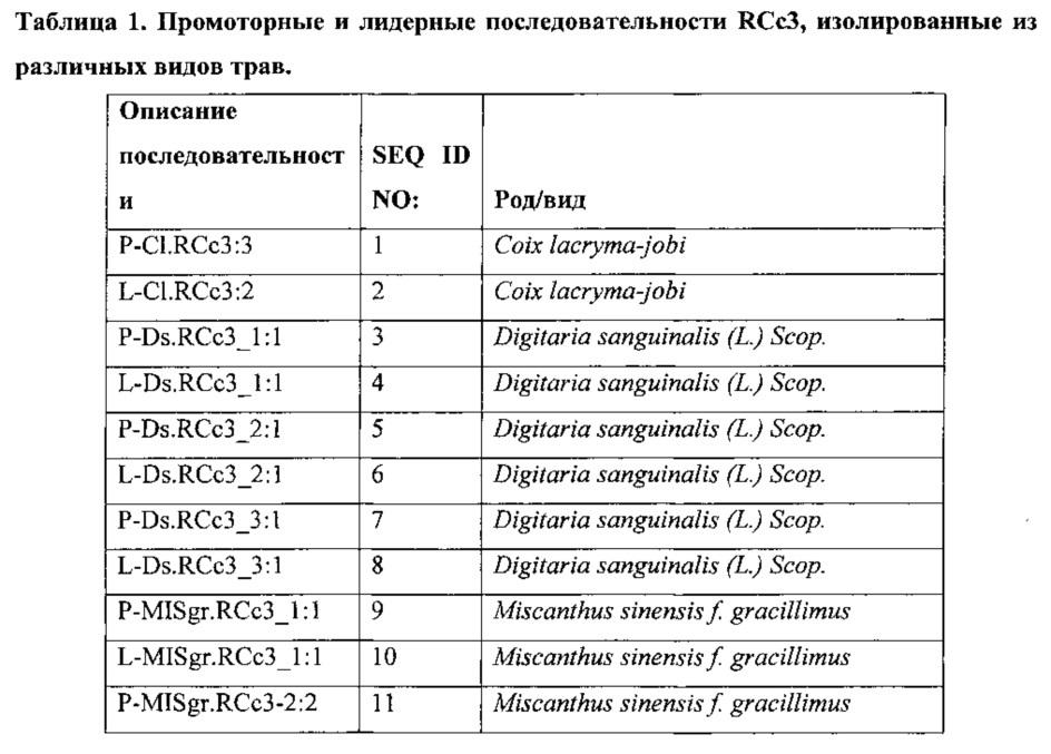 Регуляторные элементы растений и их применение
