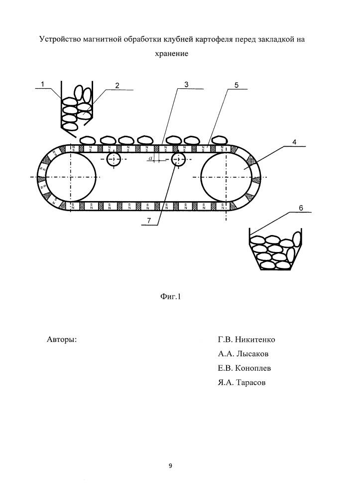Устройство магнитной обработки клубней картофеля перед закладкой на хранение