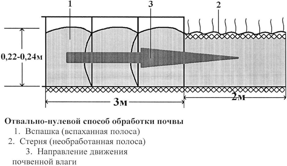 Способ полосной отвально-нулевой зяблевой обработки почвы в зонах с недостаточным увлажнением